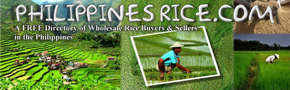 Philippines Wholesale Rice | Buy rice at wholesale prices Philippines